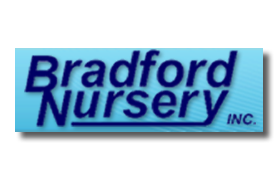 Bradford Nursery